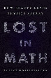 Lost in Math : How Beauty Leads Physics Astray - Hossenfelder, Sabine