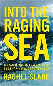 Into the Raging Sea  - Slade, Rachel