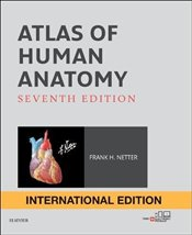 Atlas of Human Anatomy 7e IE - Netter, Frank H.