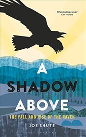 Shadow Above : The Fall and Rise of the Raven - Shute, Joe