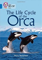 Life Cycle of the Orca : Band 16/Sapphire (Collins Big Cat) - Butterfield, Moira