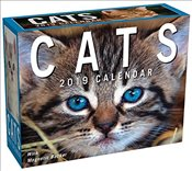 Cats 2019 Mini Day-to-Day Calendar -