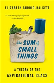 Sum of Small Things : A Theory of the Aspirational Class - Currid-halkett, Elizabeth