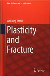 Plasticity and Fracture : Solid Mechanics and Its Applications - Brocks, Wolfgang
