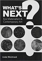 Whats Next?: Eco Materialism and Contemporary Art - Weintraub, Linda
