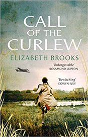 Call of the Curlew - Brooks, Elizabeth
