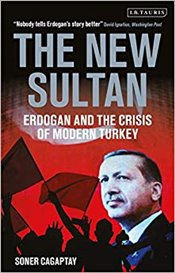 New Sultan : Erdogan And The Crisis Of Modern Turkey - Çağaptay, Soner