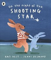 On the Night of the Shooting Star - Hest, Amy