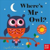 Wheres Mr Owl? -