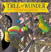Tree of Wonder : The Many Marvelous Lives of a Rainforest Tree - Messner, Kate