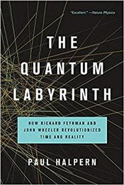 Quantum Labyrinth : How Richard Feynman And John Wheeler Revolutionized Time And Reality - Halpern, Paul