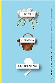 Picnic Comma Lightning - The Experience Of Reality In The Twenty-First Century -